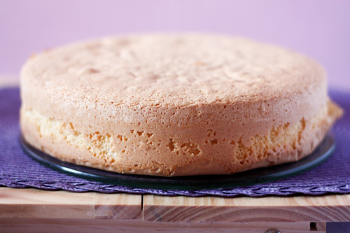 Pan di Spagna Italian Sponge Cake Photo